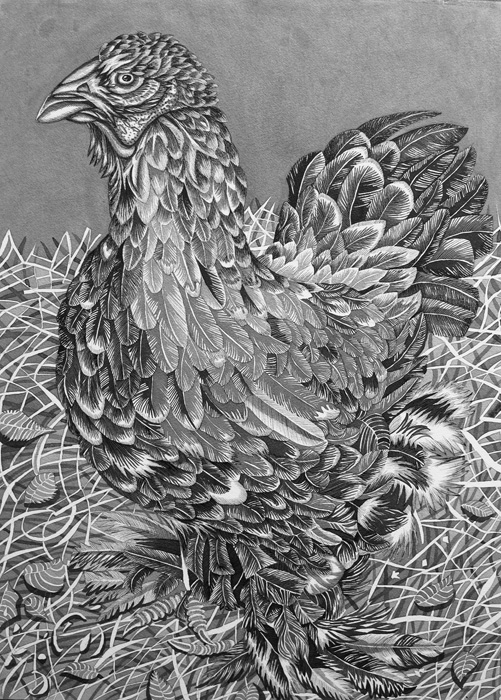 Pirjetta Brander: Big Mama, Ink on paper, 70 x 100 cm, 2020