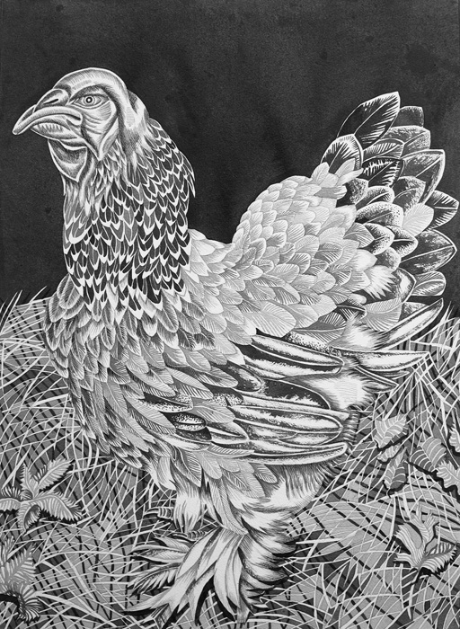 Pirjetta Brander: Hertta, Ink on paper, 70 x 100 cm, 2020