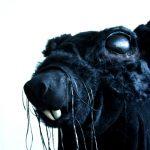 Johanna Lonka: The Ratband