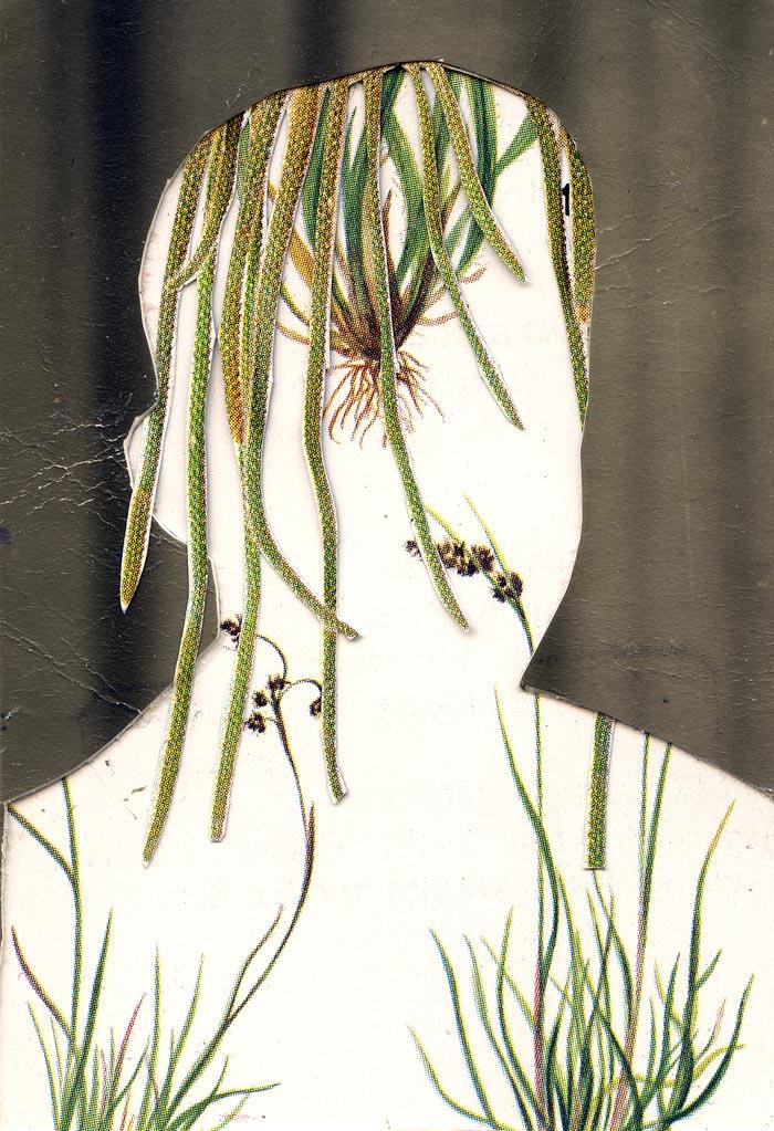 Marja Viitahuhta, Käärmekaktus, sarjasta Flowers to flowers, 2018, kollaasi, 20 x 17 cm