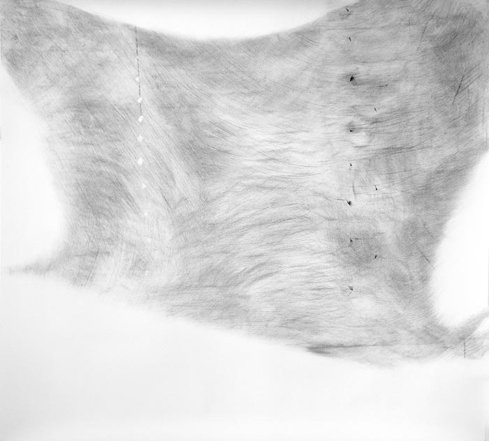 Piia Kokkarinen: Lepatus, 136 x 150 cm