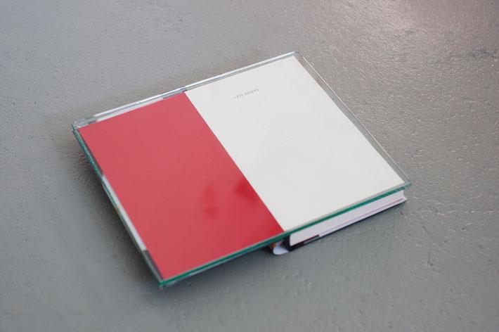 Tatu Gustafsson: Late Essays, 2018, Myöhässä oleva kirjastokirja, lasi