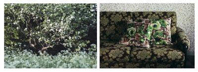 Avbild/Kuva/Image, lambda-prints, 2005