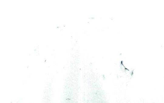 Dust on white sheet