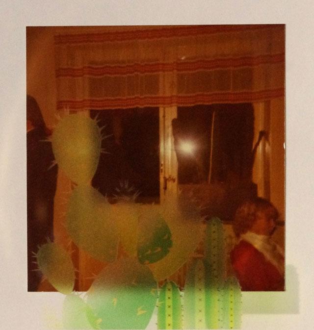 Anni Arffman: Kaktus kasvoi väliin