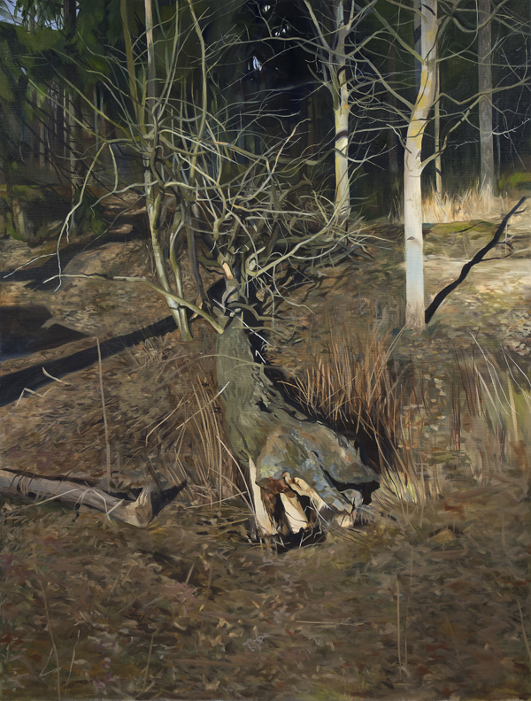 Matilda Enegren: Puu, 95x125cm, oil on canvas, 2017