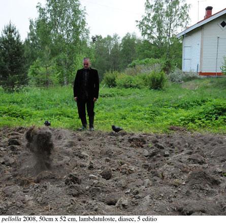 Juhana Moisander: Pellolla, 2008, 50cm x 52 cm, lambdatuloste, diasec, 5 editio