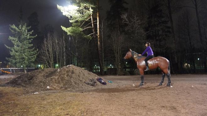 Odo Maran - sisäinen Udmurtia, Aino Johansson