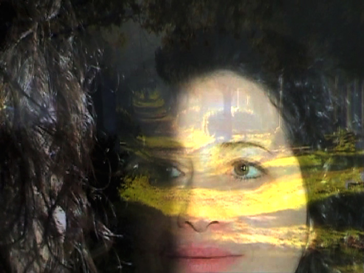 vit-LAVA-JUDITH