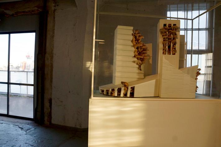 Wunderkammer / Kristiina Ljokkoi: Life Studies (Curator & image: Ville Laaksonen)